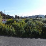 畑沢3丁目売地 1,157万  424.94㎡(128.76坪) 宅地  第1種住居地域 (外観)